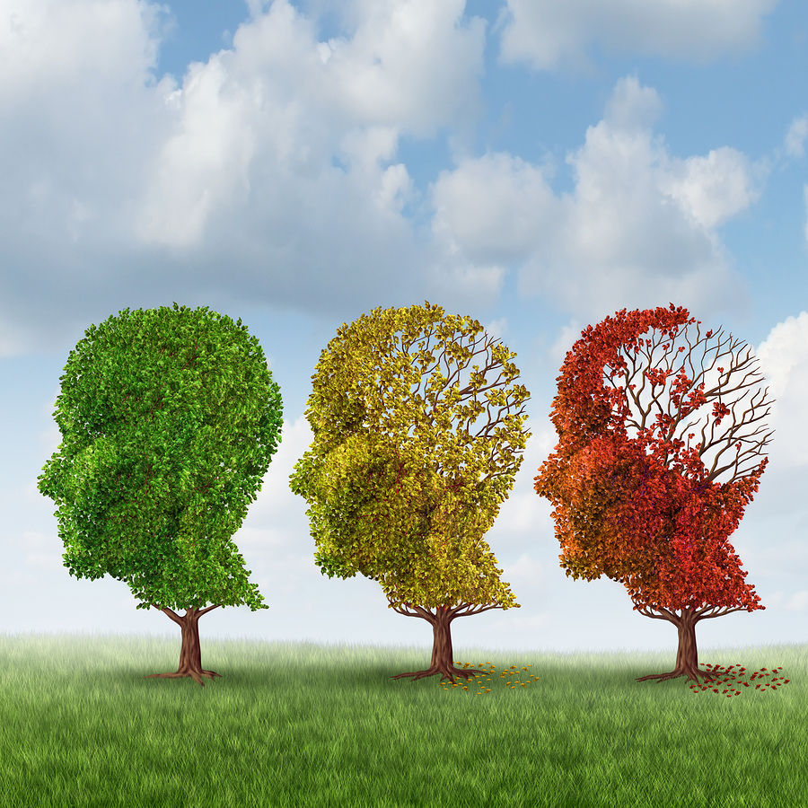 Senior Care in Belmont CA: Alzheimer's Care